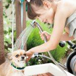 ご自宅のお庭でドッグランを作る時の注意点⑤ペットシャワーがあるととっても便利