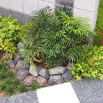 ナンテンを植えて縁起のいいお庭に!