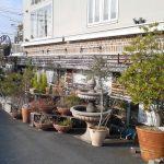 ガーデンテラスがあるカフェに行ってきました!